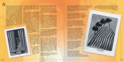 Periodika, noviny, časopisy, zpravodaje a občasníky